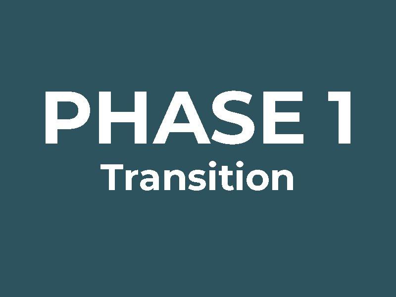 Phase 1: Transition