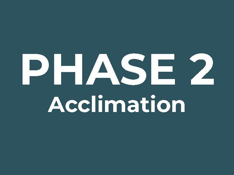 Phase 2: Acclimation